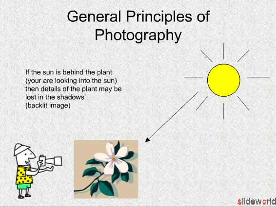 Introduction to Plant Photography