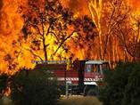 Forest Fires Hit Victoria ,Australia