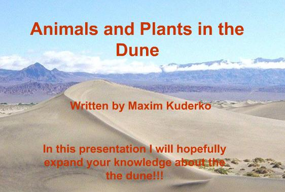 Animals and Plants in the Dune 