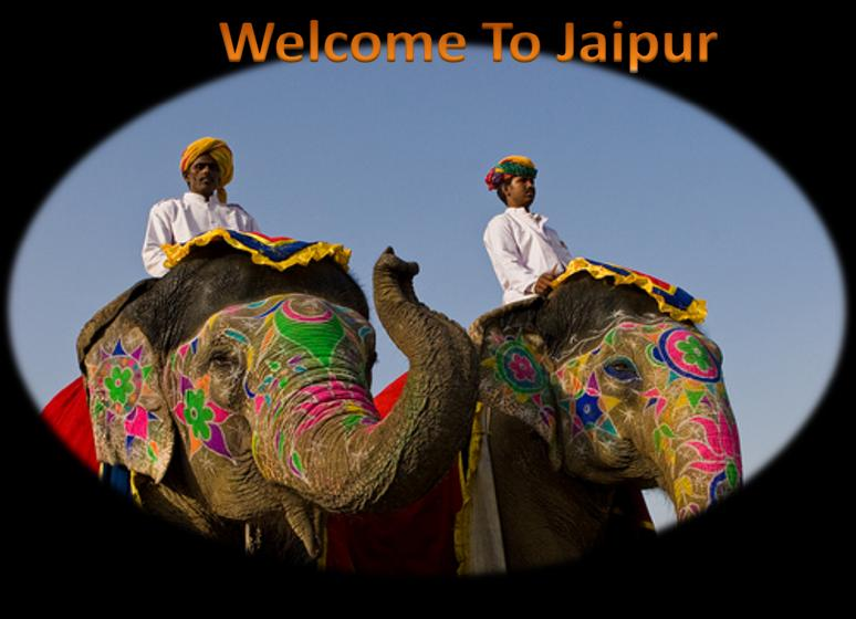 Elephant festival in Jaipur