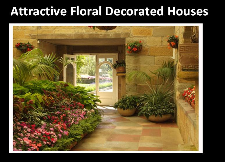 Attractive Floral decorated House