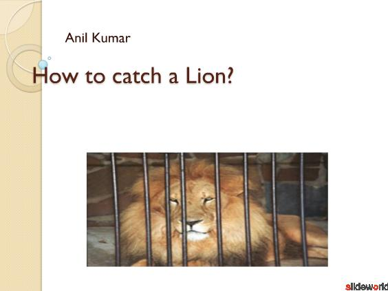 How to catch a Lion