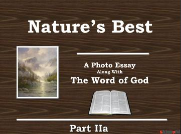 Natures Best The Word of God Part II