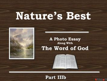 Natures Best The Word of God Part IIIa