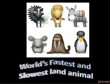 World  Fastest and Slowest Animals