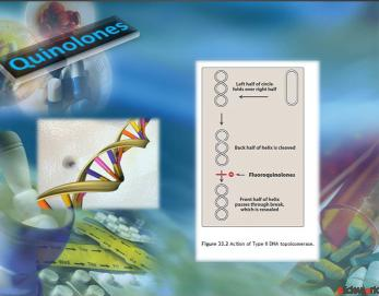 Antibiotic affecting DNA Synthesis