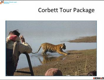 Gaurav Sharma Seo, Corbett Tour Package 