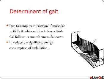 gait-biomechanics,analysis and abnormal gait