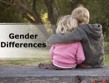 Gender Differences (Modern) PowerPoint Presentation Content 166 slides
