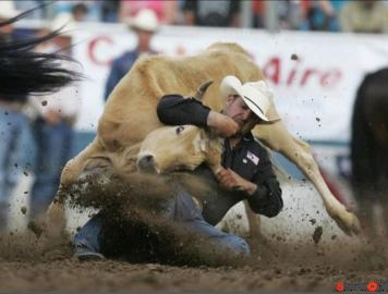 MOst Dangerous moments of rodeo