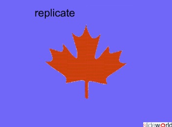 replicate