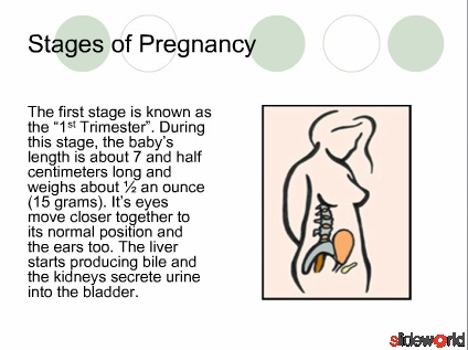 Pregnancy