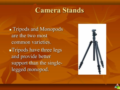 Types of Stands and Their Uses in Photography