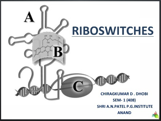 Riboswitches - a gene regulator by Chirag Dhobi
