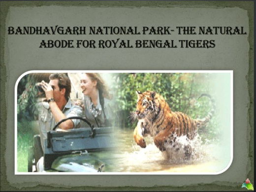 Bandhavgarh National Park- the natural abode for Royal Bengal Tigers
