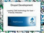 Drupal Development - Leading CMS technology for User Friendly Websites