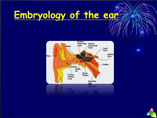 Anatomy of the ear ppt by Dr Manas