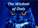 The Wisdom of Owls