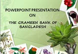 grameen bank of bangladesh