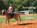 Everything About Horse Riding powerpoint presentation