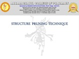 Structure Pruning Technique powerpoint presentation