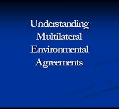 Understanding Multilateral Environmental Agreements