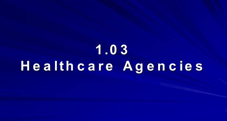 Healthcare Agencies