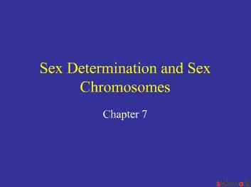 Sex Determination and Sex Chromosomes