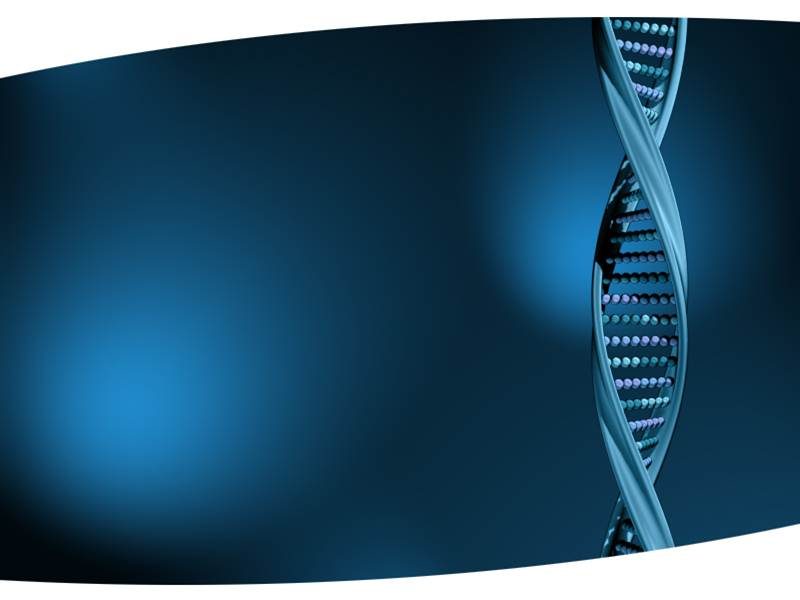dna structure powerpoint template, ppt backgrounds on dna strand, Dna Ppt Template, Powerpoint templates