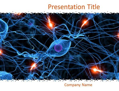 Nervous System 1 Powerpoint Templates