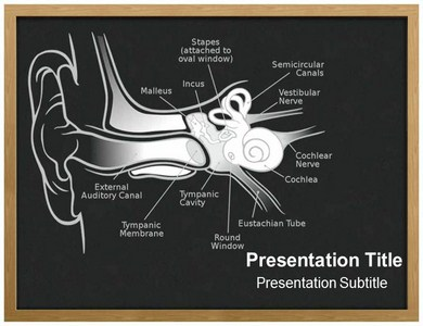 Ear Anatomy Powerpoint Templates