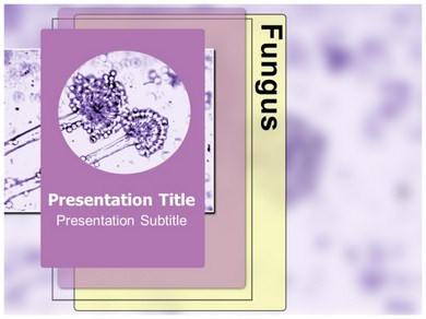 Fungus Powerpoint Templates