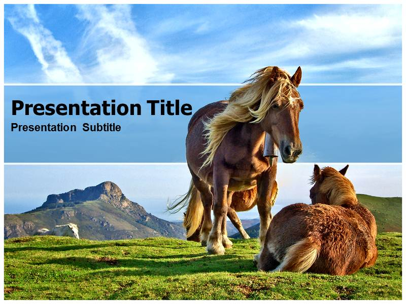 Horse Free Powerpointppt Templates Free Free Horse Powerpoint