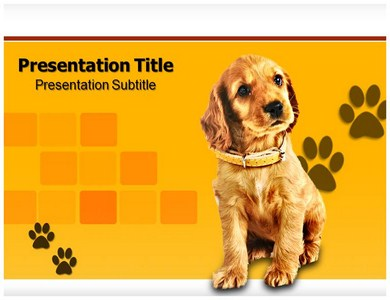 question and answers powerpoint templates | powerpoint, Modern powerpoint