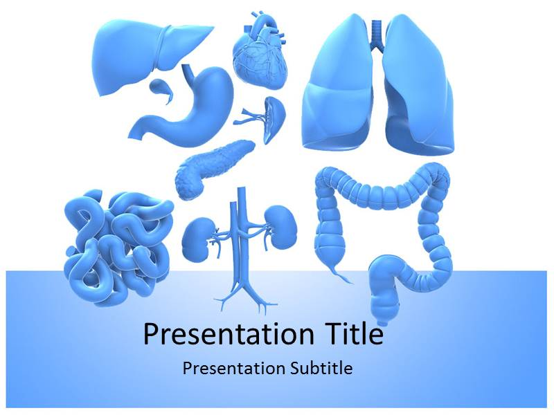 Liver powerpoint templates liver ppt templates liver powerpoint my toneelgroepblik Image collections