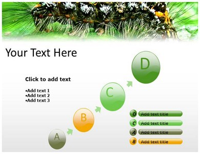 Caterpillar Insect Powerpoint Templates