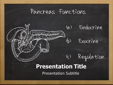 Function Of Pancreas Powerpoint Templates