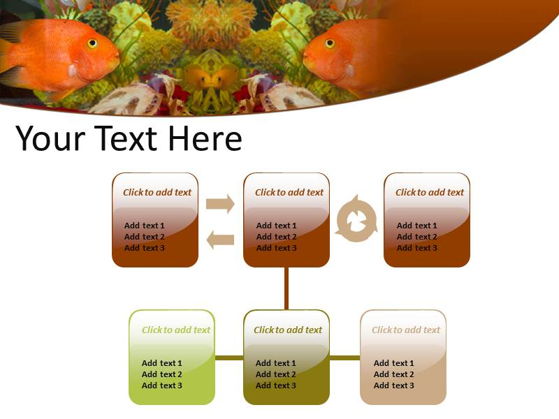 Aquarium Fish Powerpoint Templates