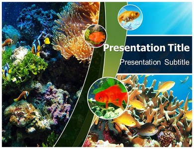 Coral Reefs Powerpoint Templates
