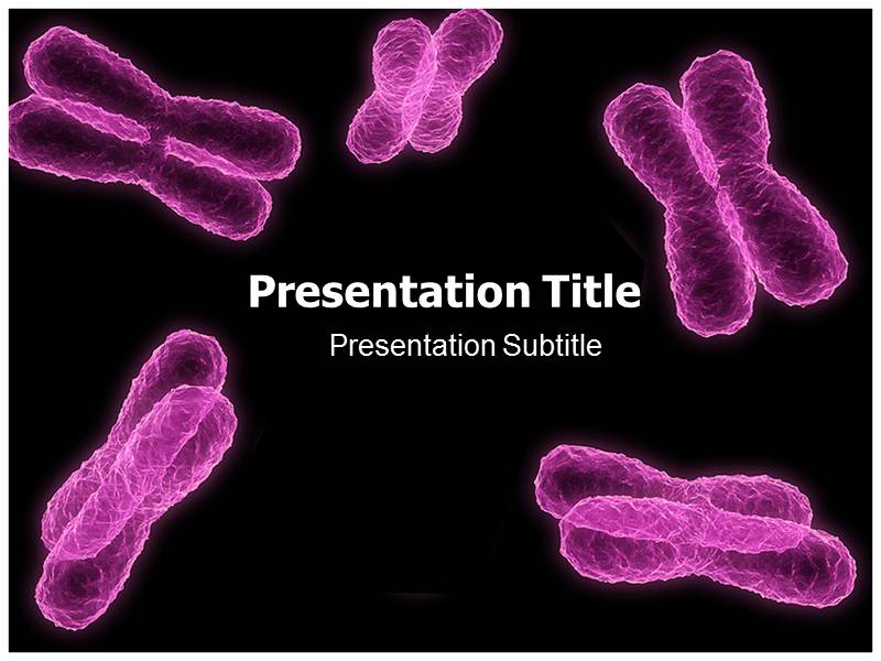 Chromosome powerpoint templates powerpoint templates for chromosome my toneelgroepblik Images