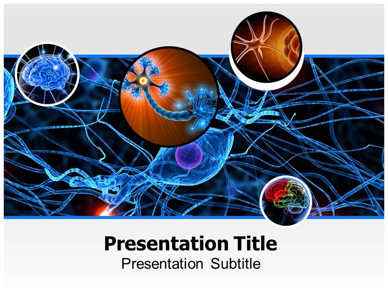 Neurology powerpoint ppt templates neurology ppt templates my toneelgroepblik