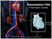 Catheterization powerPoint template