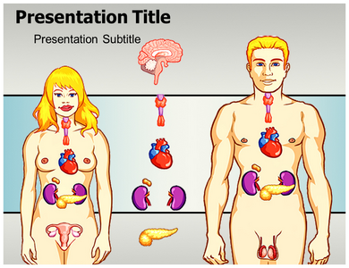 Endocrine System Powerpoint Templates