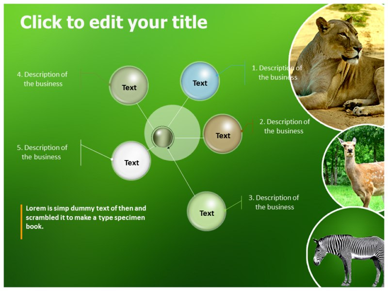 Zoo Animals Powerpoint Templates