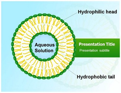 Liposome Powerpoint Templates
