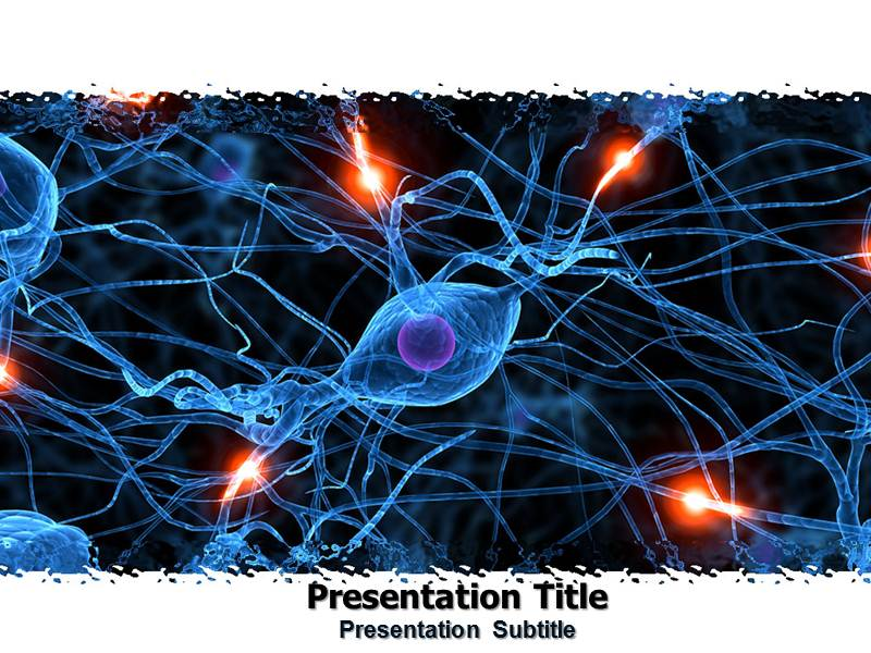 nervous system powerpoint  ppt  templates  powerpoint