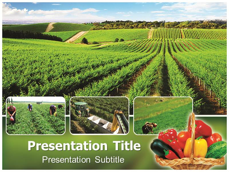 Organic farming ppt powerpoint templates powerpoint template for download toneelgroepblik Images