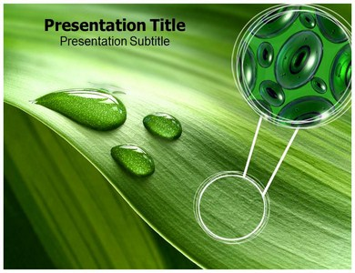 Plant Tissue Powerpoint Templates