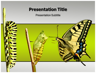 Life Cycle Powerpoint Templates