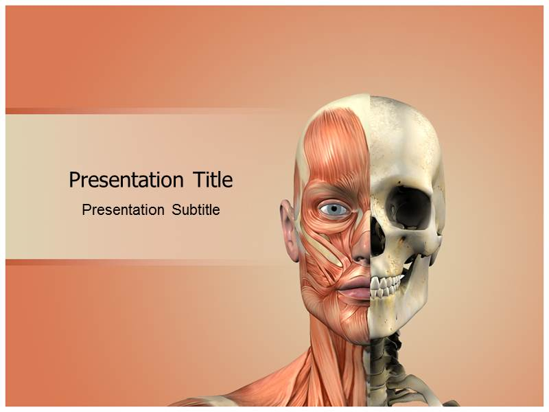 Face Anatomy Powerpoint Templates Face Anatomy Ppt Templates